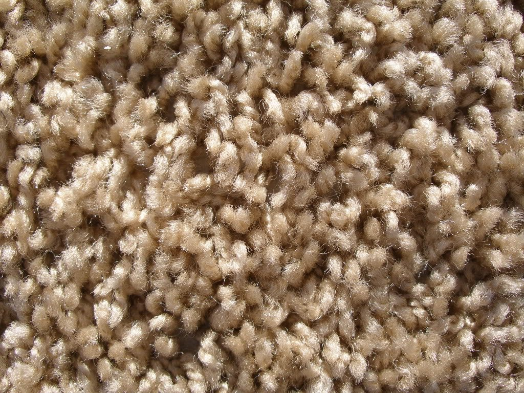 Amazon.com: 2u0027x3u0027 Beige Area Rug. FRIEZE Plush Textured CARPET For  Residential Or Commercial Use. Many Sizes And Shapes To Choose From.