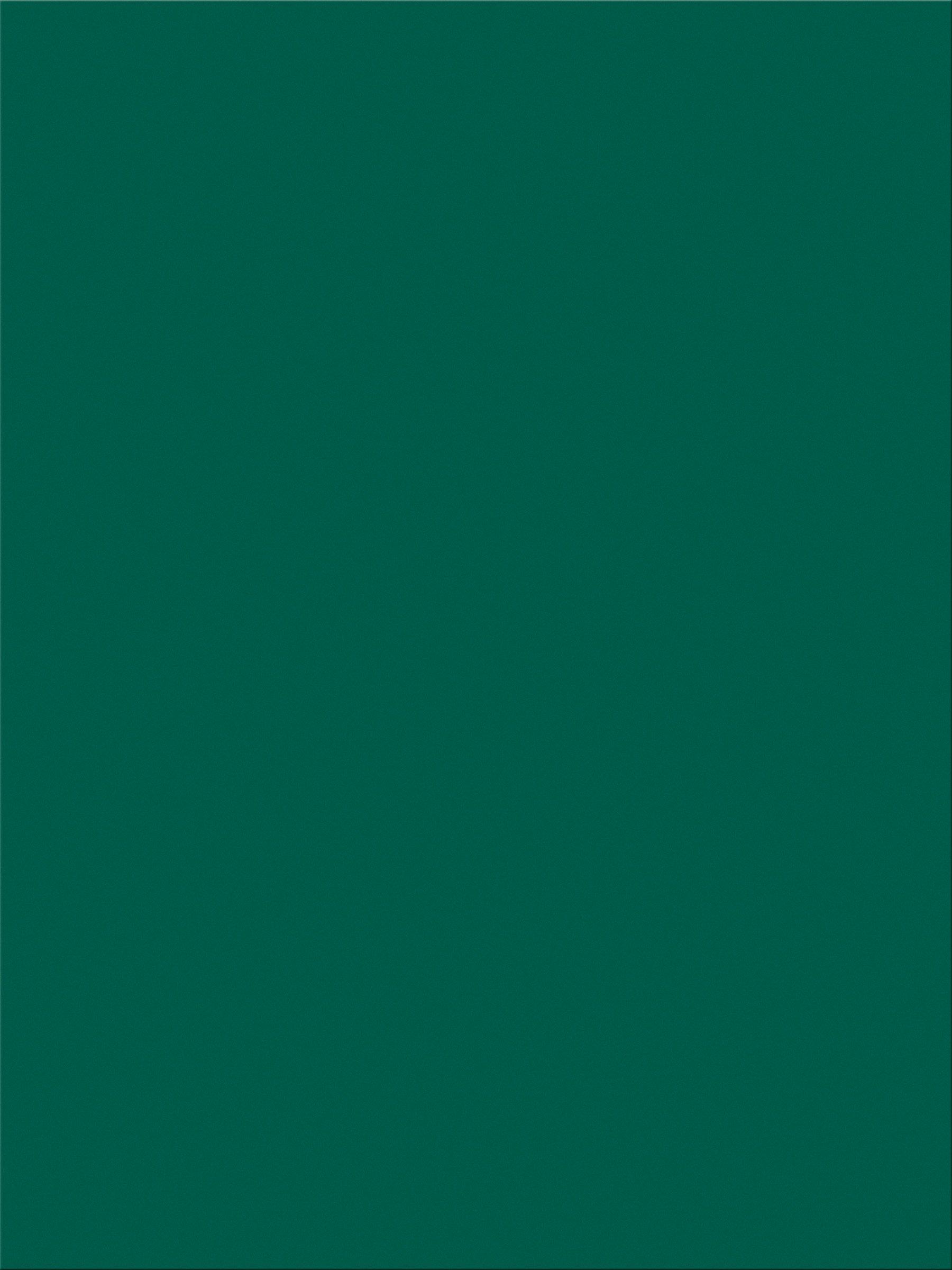 Pacon SunWorks Construction Paper, 9'' x 12'', 100-Count, Dark Green (7804)
