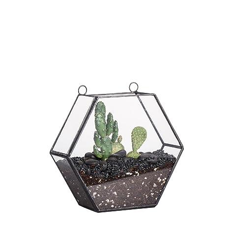 4 5cm Thick Hanging Glass Terrarium Handmade Geometric Planter Small