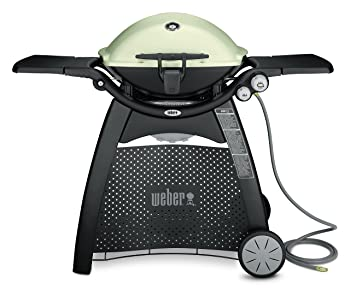 Weber Q3200 Natural Gas Grill