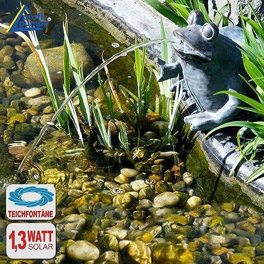 Fuente de jardín con bomba solarcomo decoración para terraza, estanque o jardín, Solar ohne Akku FROSCHKÖNIG: Amazon.es: Jardín