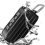Altoparlante Bluetooth, Techvilla Vigor 1 10W Altoparlanti Wireless Portatili con 10 ore di riproduzione, Cassa Bluetooth Impermeabile IPX6, Bassi Potenti, Microfono Incorporato (Nero)