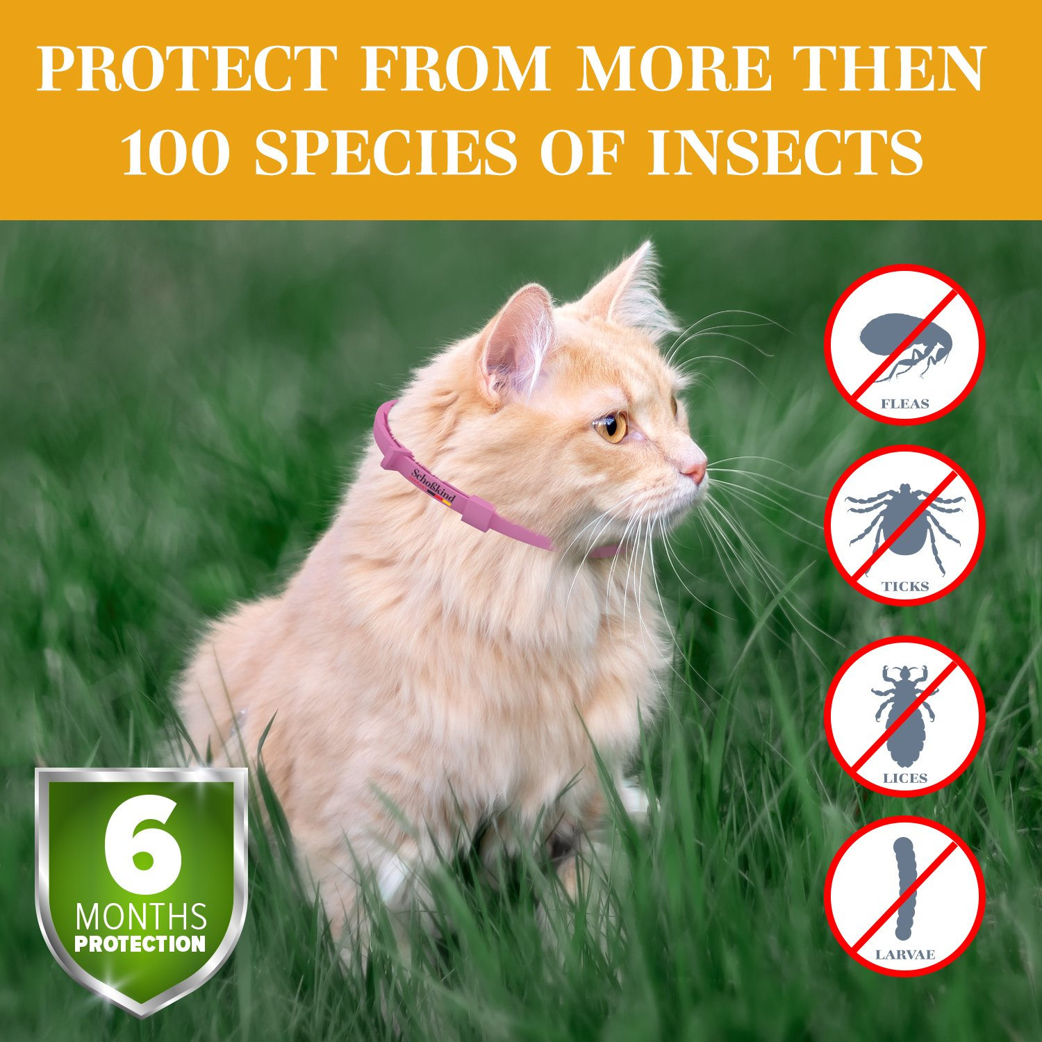 Flea Collar - Tick Collar for Cats - Made for Germany - 100% Safe & Eco-Friendly - Based on Natural Oils - Flea and Tick Prevention Pets - 6-Month Protection - Waterproof Cat Flea Collar (Pink) by Organic Way (Image #4)