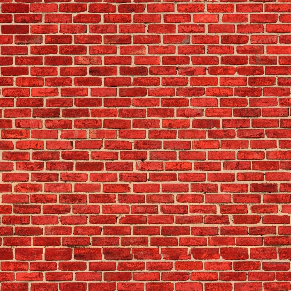 ケイトレンガ壁の背景幕の写真 10x10ft 10x10ft 7267 B078ZZFM9P