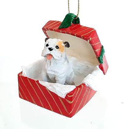 Amazon.com: BULL DOG White English BullDog sits in a Red Gift Box ...
