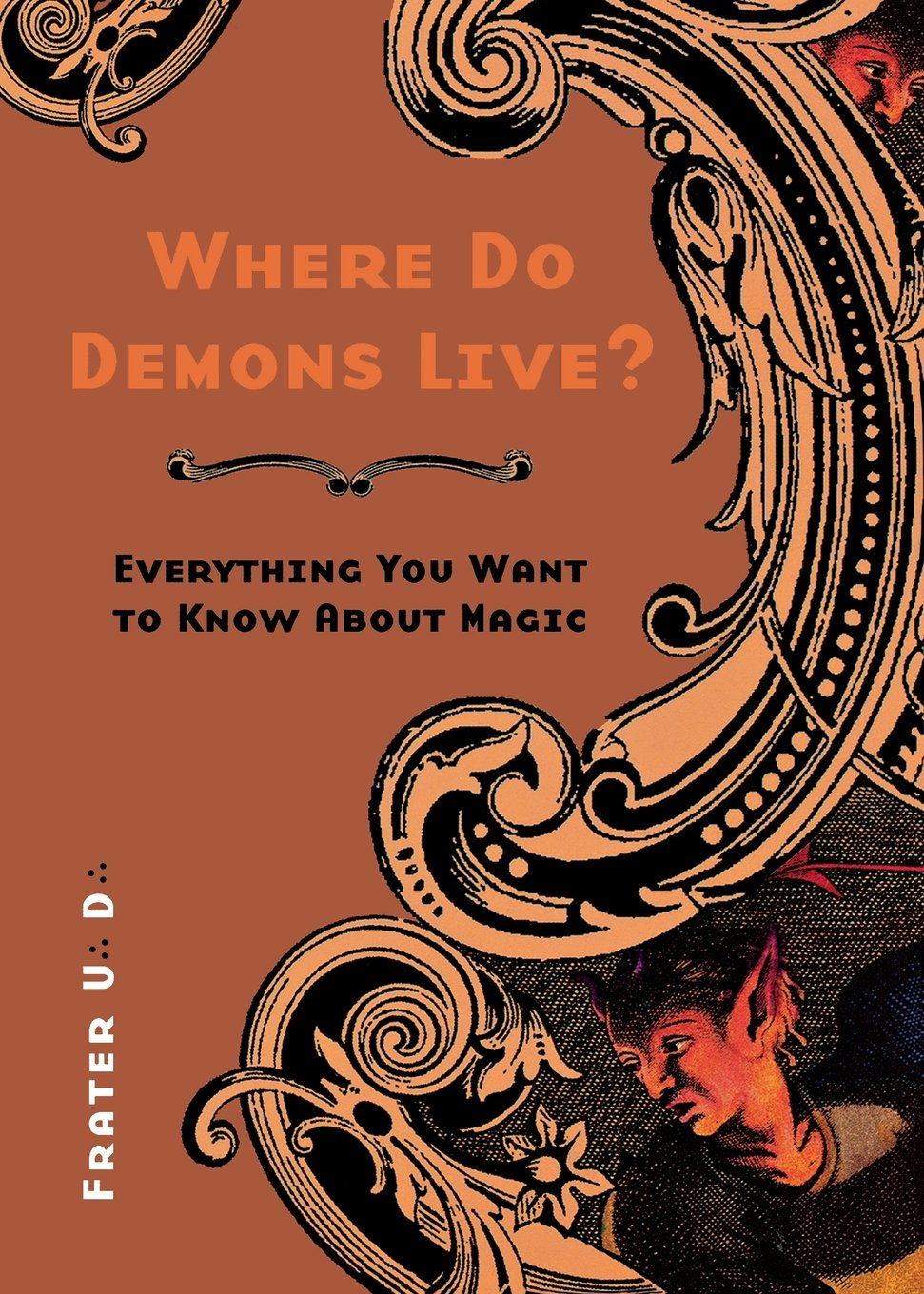 Download Where Do Demons Live?: Everything You Want to Know About Magic PDF