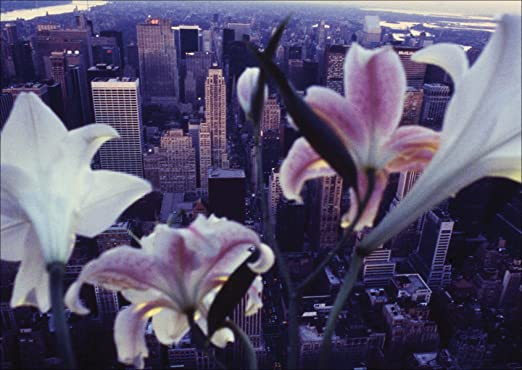 LOS VIAJES AMO NUEVA YORK ESTADOS UNIDOS ESTATUA DE LA LIBERTAD; Perlas tibetanas LOS VIAJES Cord/ón satinado de alta calidad y gran resistencia. Pulsera de la suerte I LOVE NEW YORK