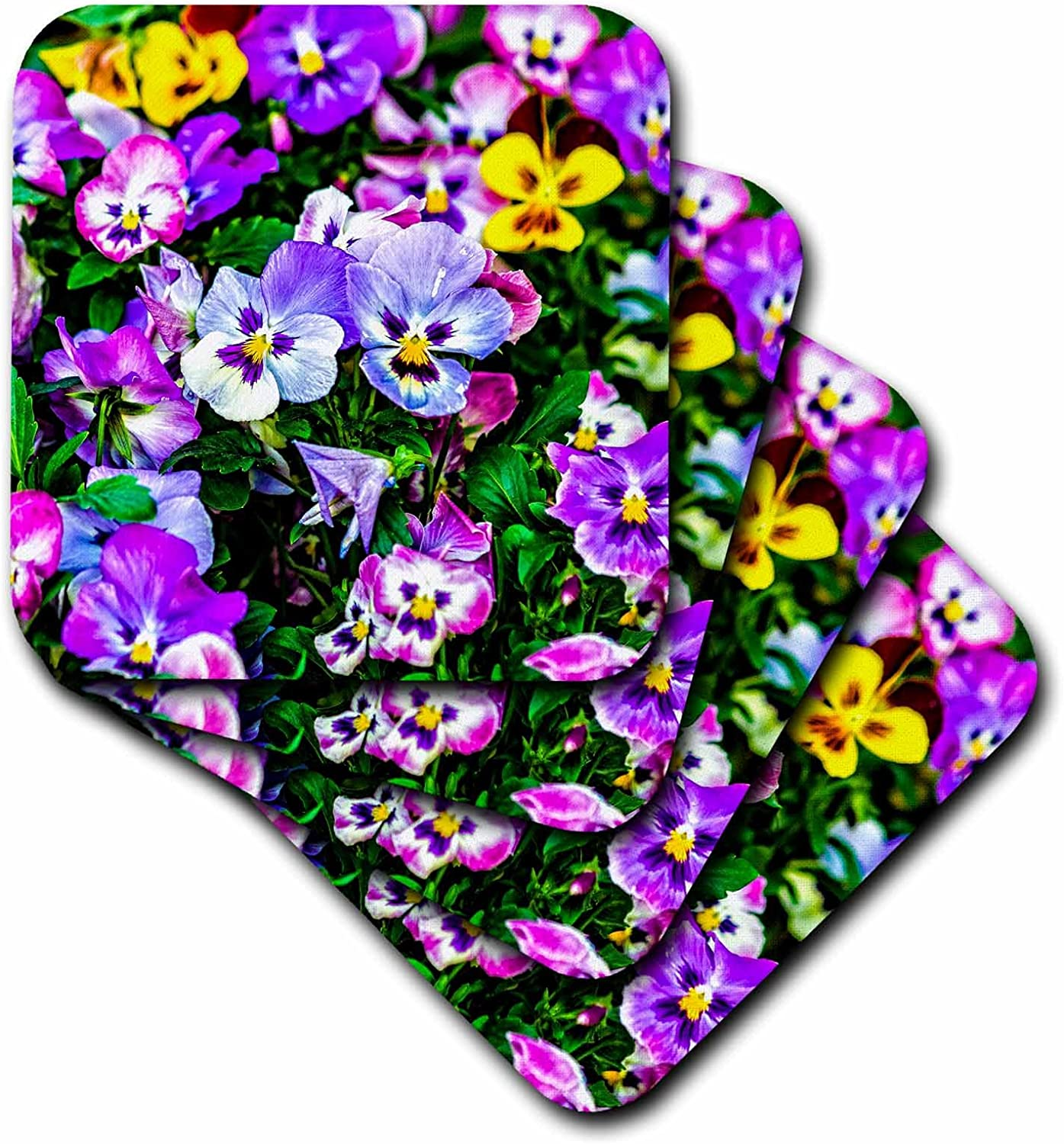 Ceramic Tile Coasters 3dRose cst/_270756/_3 Pansy Flowers On A Flowerbed Set Of 4