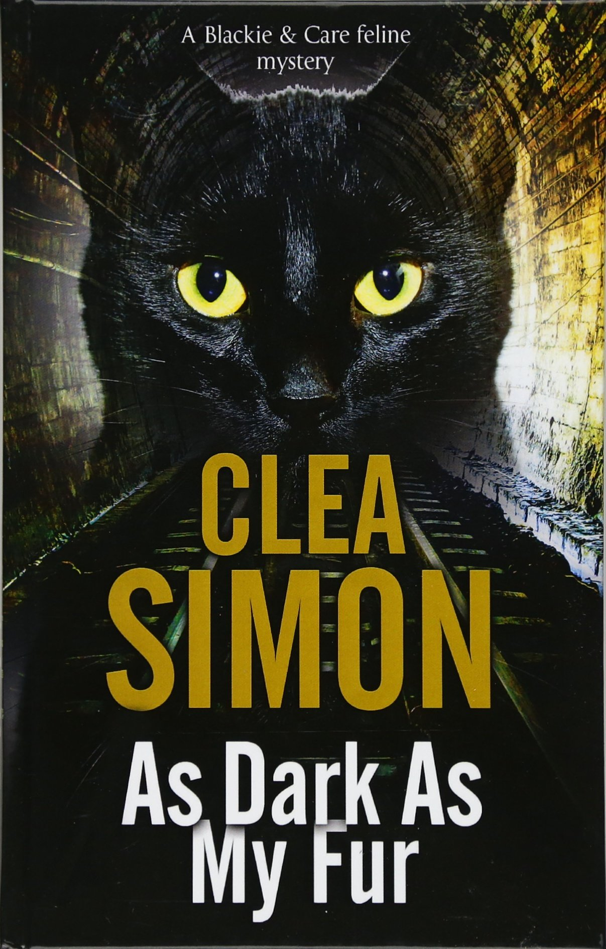 Download As Dark as My Fur (A Blackie and Care Cat Mystery) pdf