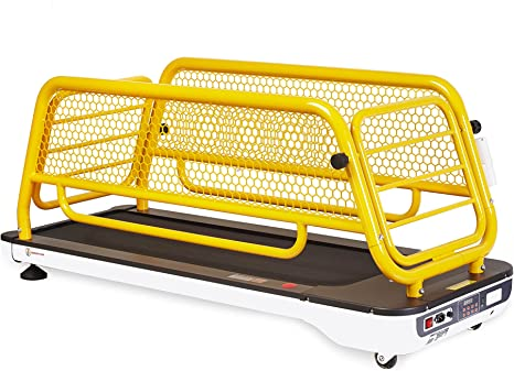 PANCHOS GYM Cinta DE Correr para Perros - Treadmill FOR Dogs ...