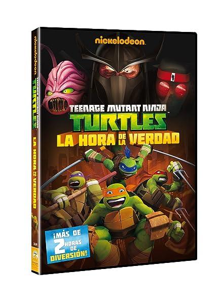 Las Tortugas Ninja: La Hora De La Verdad [DVD]: Amazon.es ...