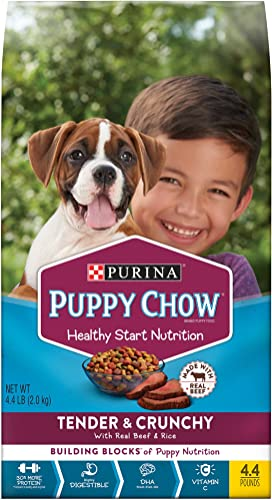 Purina Puppy Chow Tender Crunchy Dry Puppy Food – 4.4 lb. Bags Pack of 4