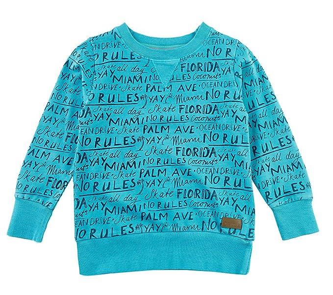 Sturdy - Sudadera - Sudaderas - para niño Azul Aquablau 104: Amazon.es: Ropa y accesorios
