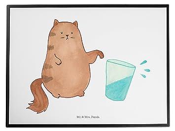 Mr. & Mrs. Panda vade gato Agua Cristal – 100% fabricado en Alemania