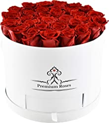 Valentine's Day Collections| Roses with Longevity (Large, Red in White Box)