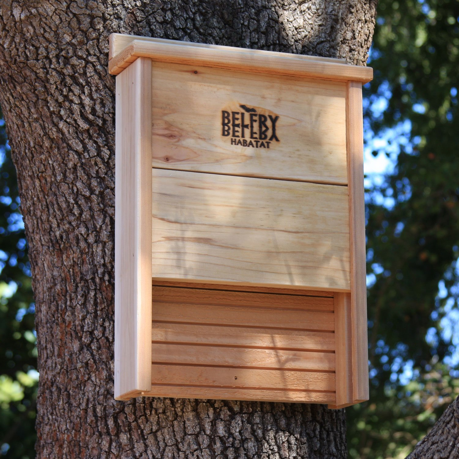 What Does A Bat House Look Like