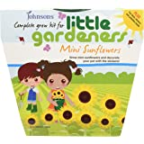 Johnsons 21798 Little Gardeners Mini Sunflowers Grow Kit - Multi-Colour
