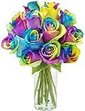 KaBloom Bouquet of Fresh Cut Rainbow Roses: 12 Rainbow-Swirl Roses with Vase