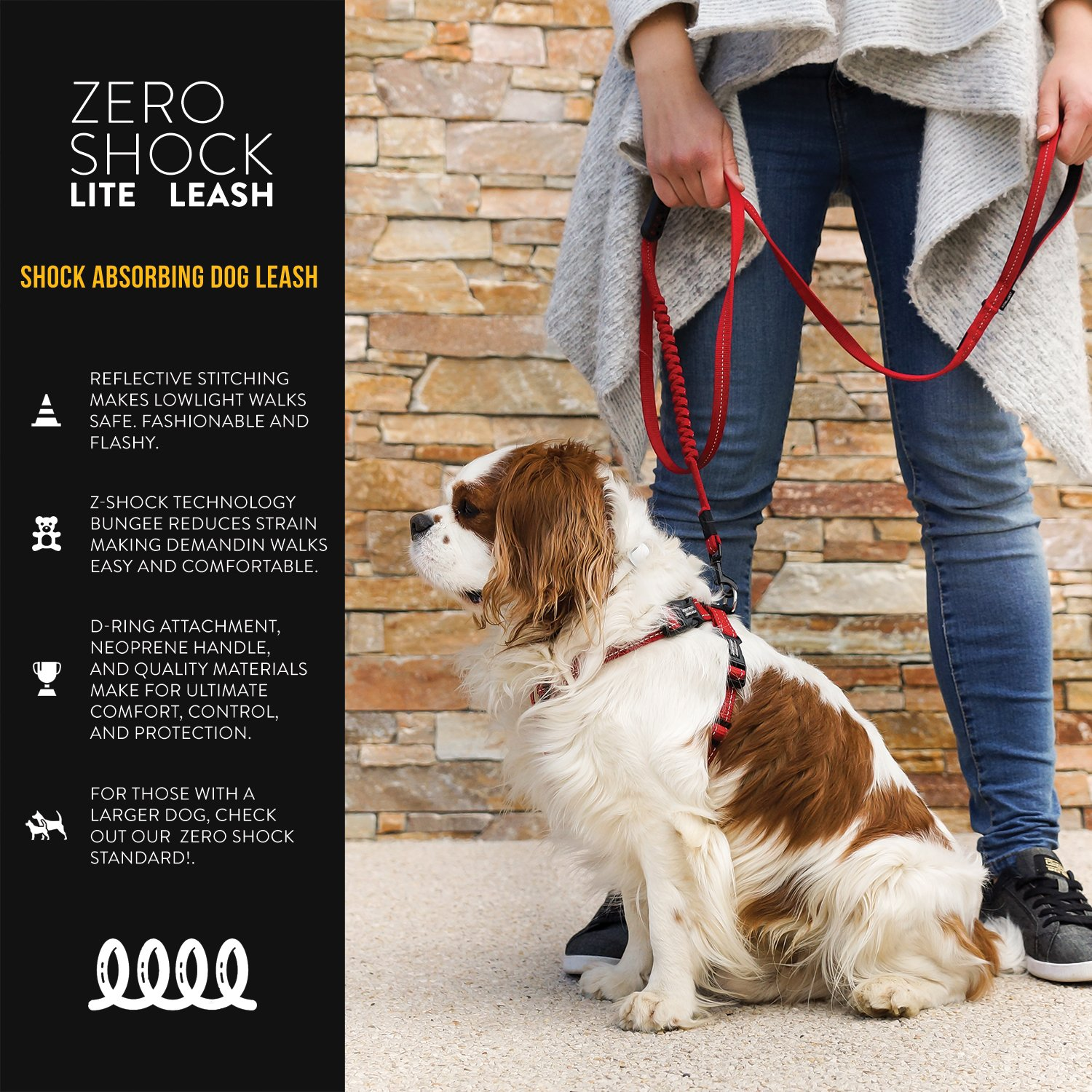 Amazoncom Ezydog Zero Shock Lite Bungee Dog Leash For Small Dogs