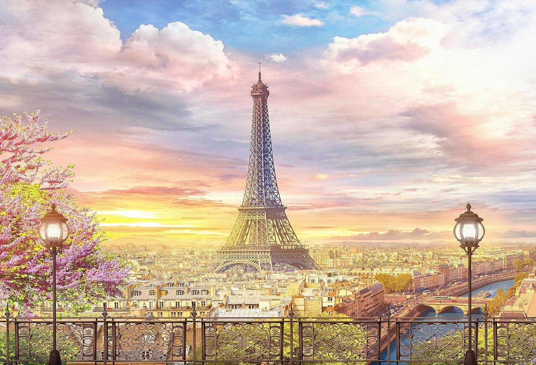 Kate 10×6.5フィート (300cm×200cm) 写真撮影用背景 パリ エッフェル塔 青空 太陽の光 写真スタジオ 背景 小道具 写真撮影用   B07F83Q3S2