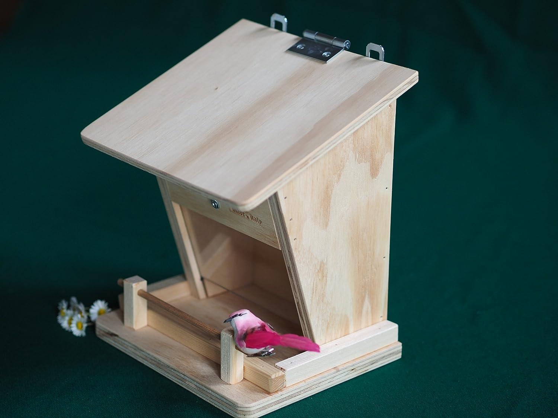 Mangiatoia Professionale Per Uccelli Selvatici Con Dispenser Blitzen Made  In Italy 100%: Amazon.it: Giardino E Giardinaggio