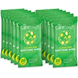 Care Touch Alcohol-Free Hand Sanitizing Wipes - 12 Pouches, 240 Wipes - Moisturizing Hand Wipes with Vitamin-E and Aloe Vera