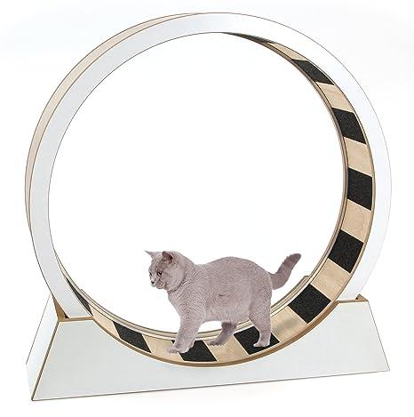 SwissPet Gato Rueda – Juguete & Entrenamiento para Gatos