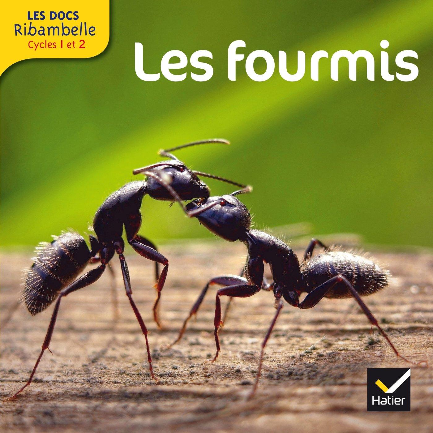 Les Docs Ribambelle Cycle 2 éd. 2014 - Les fourmis Album – 12 mars 2014 Valérie Videau Jean-Pierre Demeulemeester Hatier 2218973081