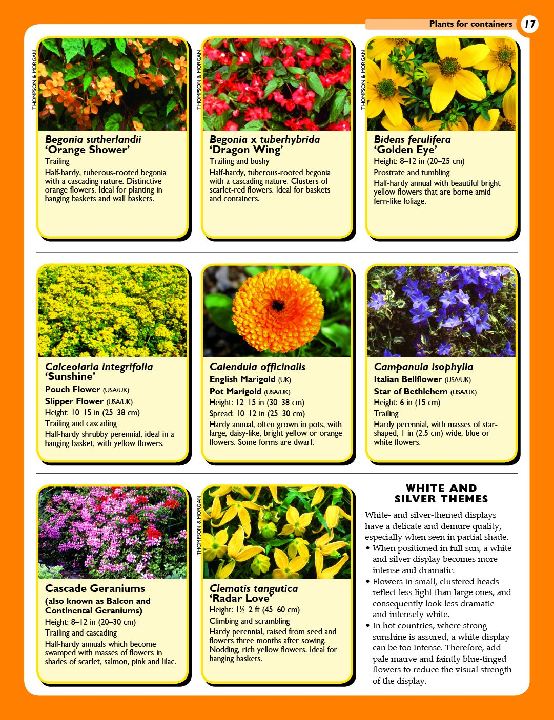 Home Gardeners Container Gardens Planting In Containers And