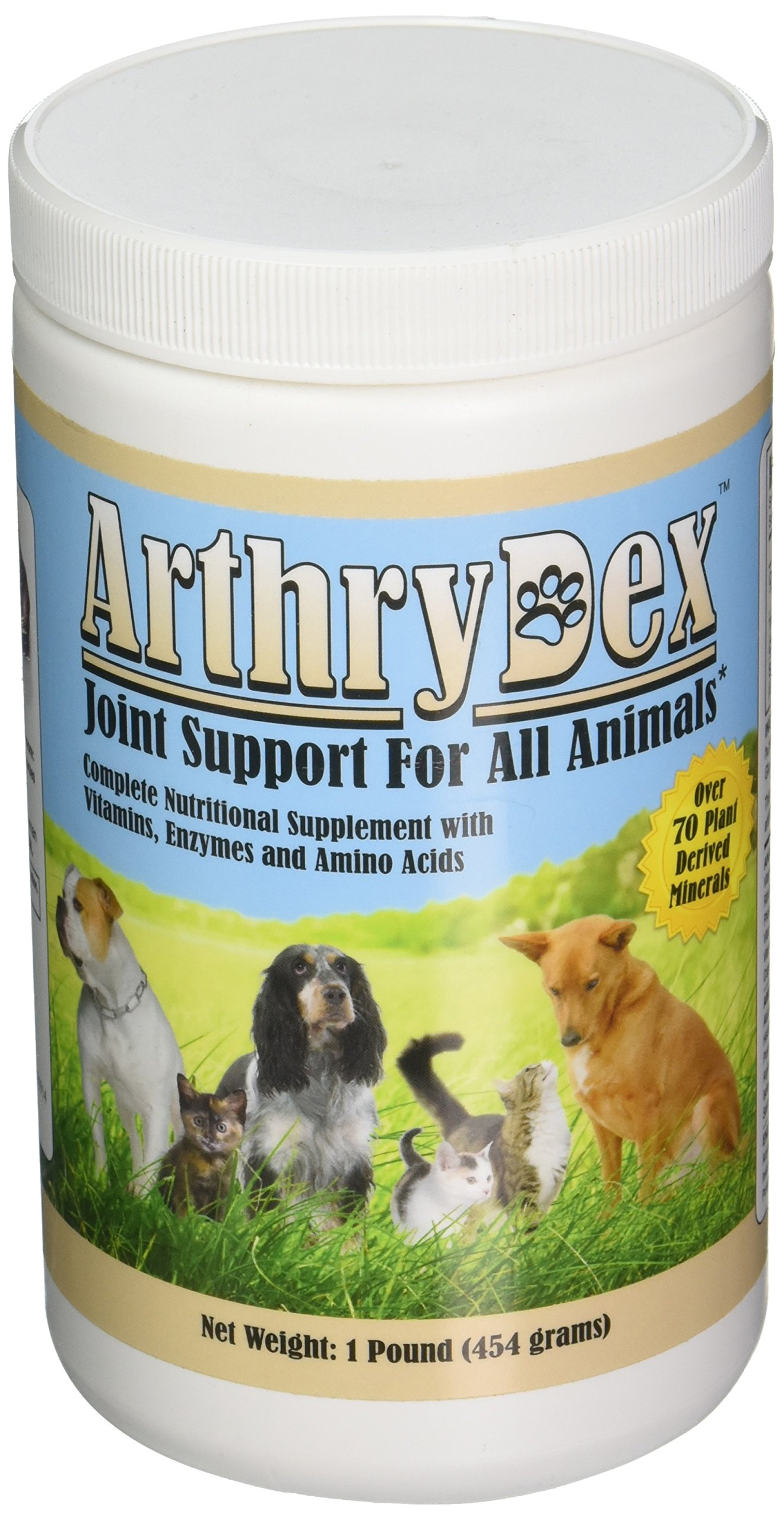 ArthryDex – 1 lb canister
