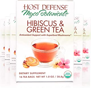 product image for Host Defense - MycoBotanicals Hibiscus & Green Tea, Superfood Mushroom and Antioxidant Support for Wellness and Vitality, Ginger, Lemongrass, Licorice Root, Tulsi, 96 Tea Bags (6 Pack)