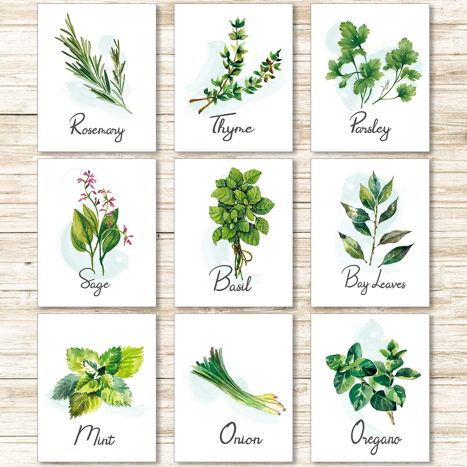 9 Pieces Kitchen Herb Botanical Wall Art Print Poster Nature Floral Plant Greenery Art Sign Picture for Bedroom Living Room Wall Decorations (Unframed, 8 x 10 Inch)