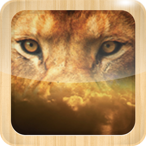Lion Live Wallpaper Hd Free Amazones Appstore Para Android