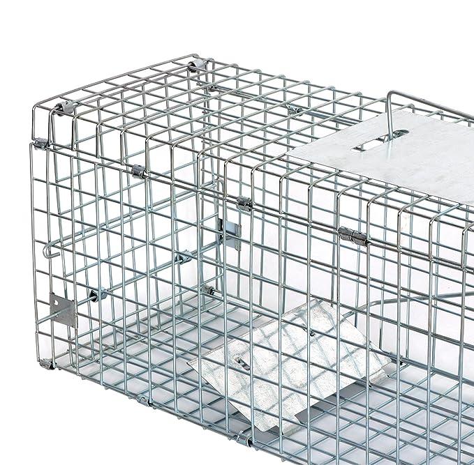 Amazon.com: Zeny animales vivos jaula trampa 24