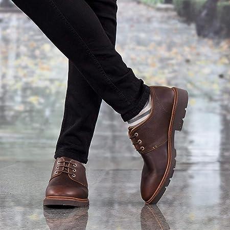 Zapatos Panama Jack Dallan C13 marrón