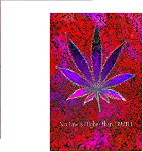 Studio B No Law Higher Than Truth Neon NonFlocked Blacklight Poster 24x36 inch