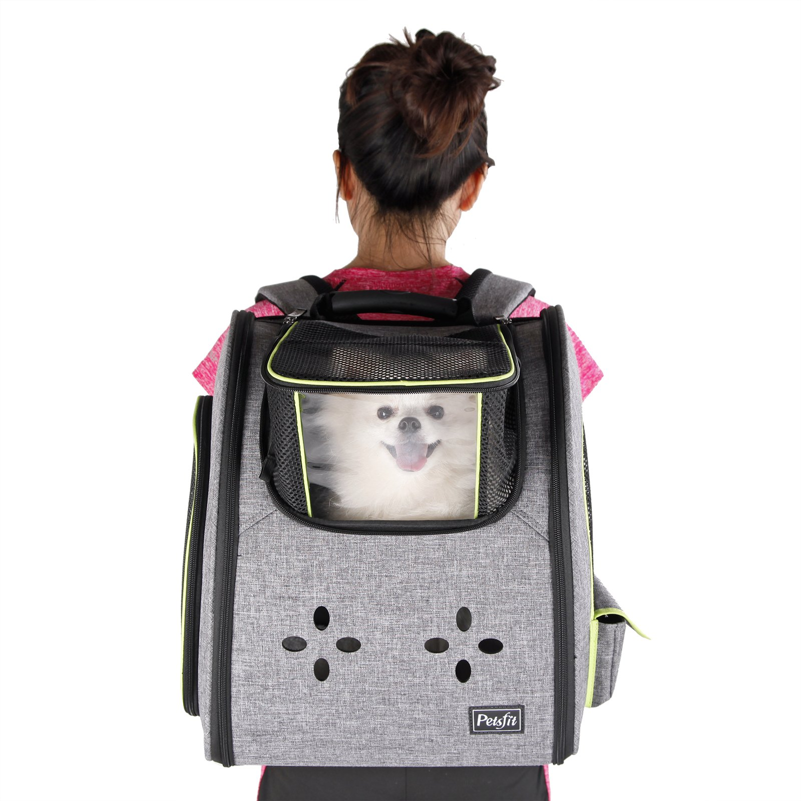 Petsfit Dogs Carriers Backpack for Cat/Dog/Guinea Pig/Bunny Durable and Comfortable Pet Bag by Petsfit (Image #8)
