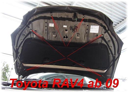 AB-00206 BRA f/ür RAV4 Bj ab 2010 Haubenbra Steinschlagschutz Tuning Bonnet Bra