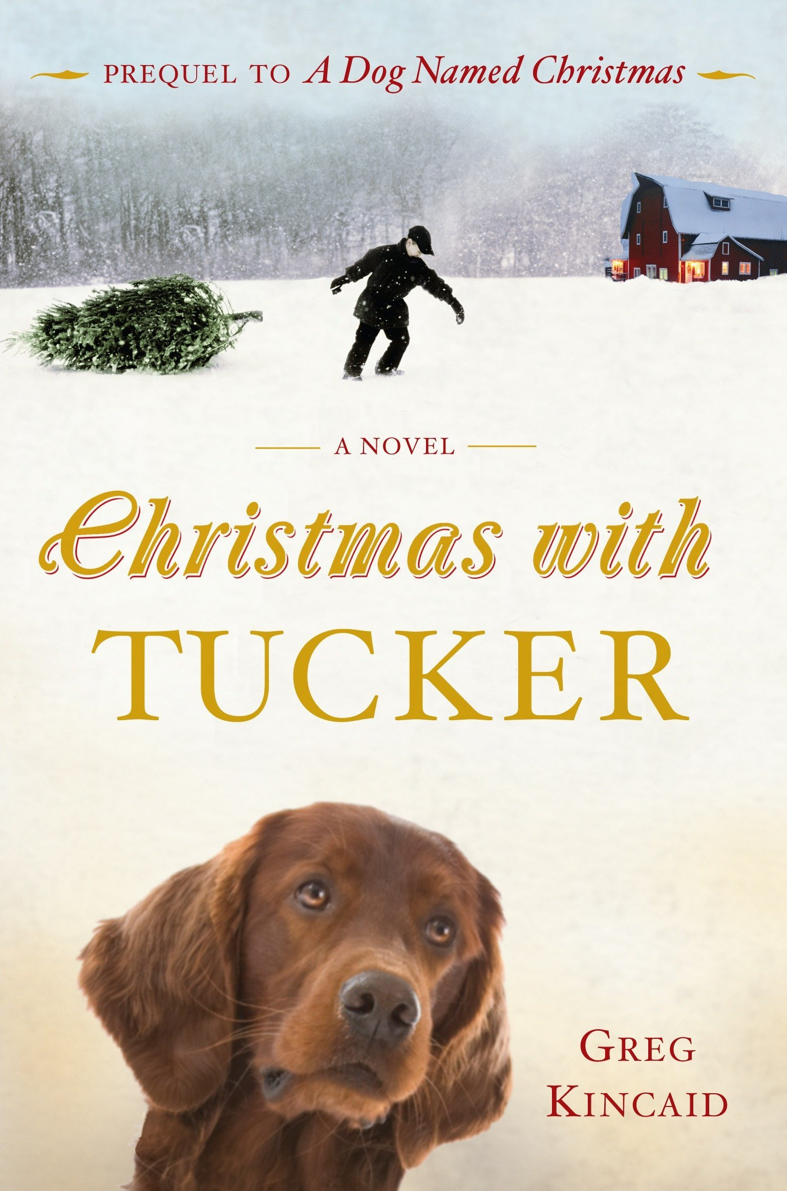 A Dog Named Christmas.Christmas With Tucker A Dog Named Christmas Greg Kincaid