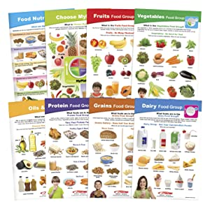My Plate Food & Nutrition Bulletin Board Chart Set, Grades 5-9