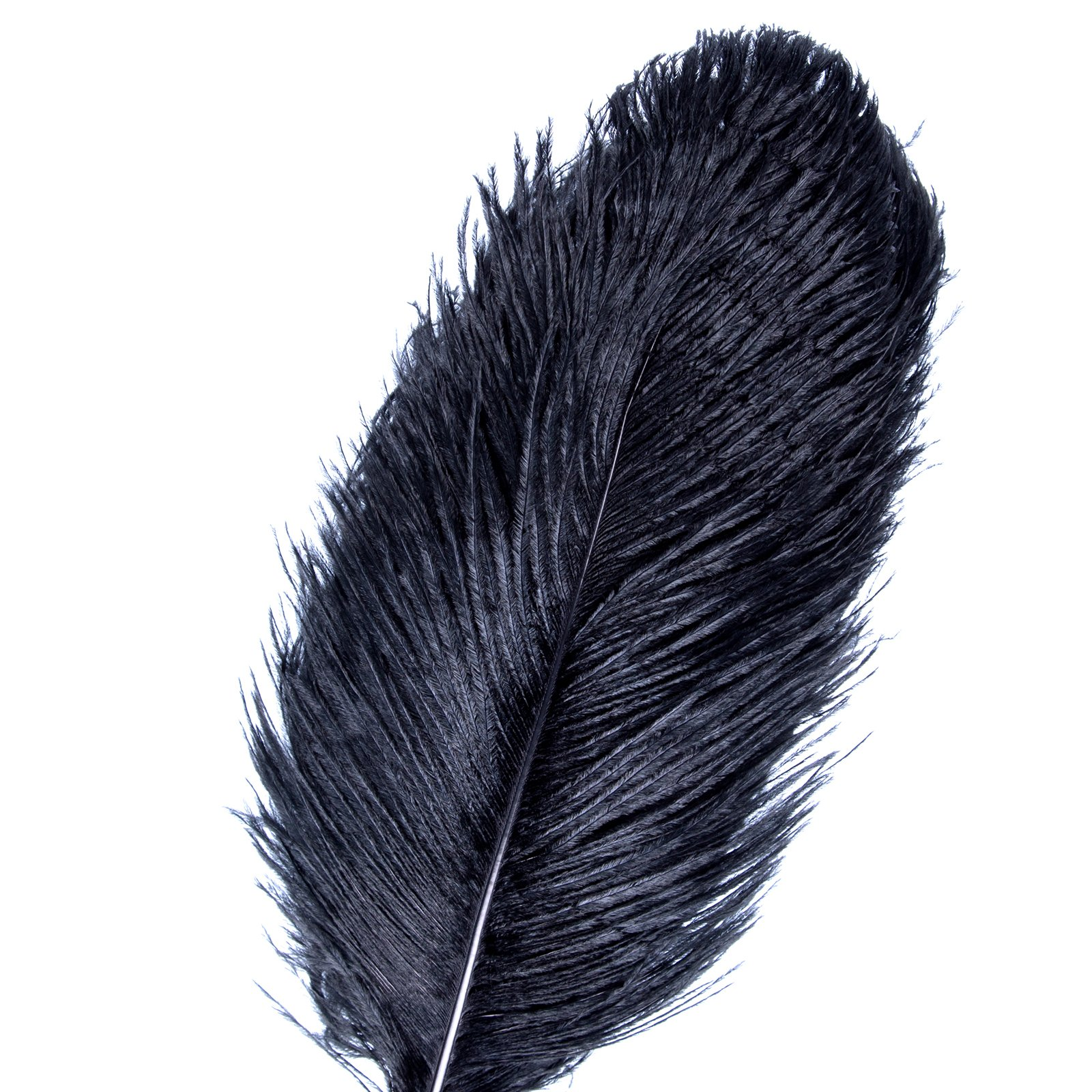 AWAYTR Natural 18-20 inch(45-50cm) Ostrich Feathers Plume for Wedding Centerpieces Home Decoration Black 50Pcs