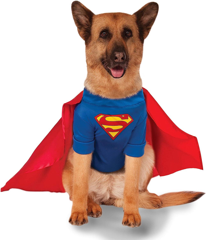 Disfraz de Superman para Perros Grandes: Amazon.es: Productos para ...