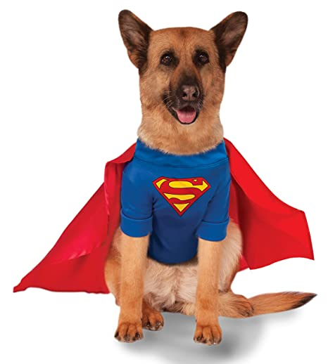ce3a34322a9af Image Unavailable. Image not available for. Color  Big Dogs  Superman Pet  ...