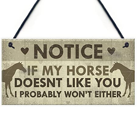 Meijiafei Funny Horse Gifts for Women Hanging Sign