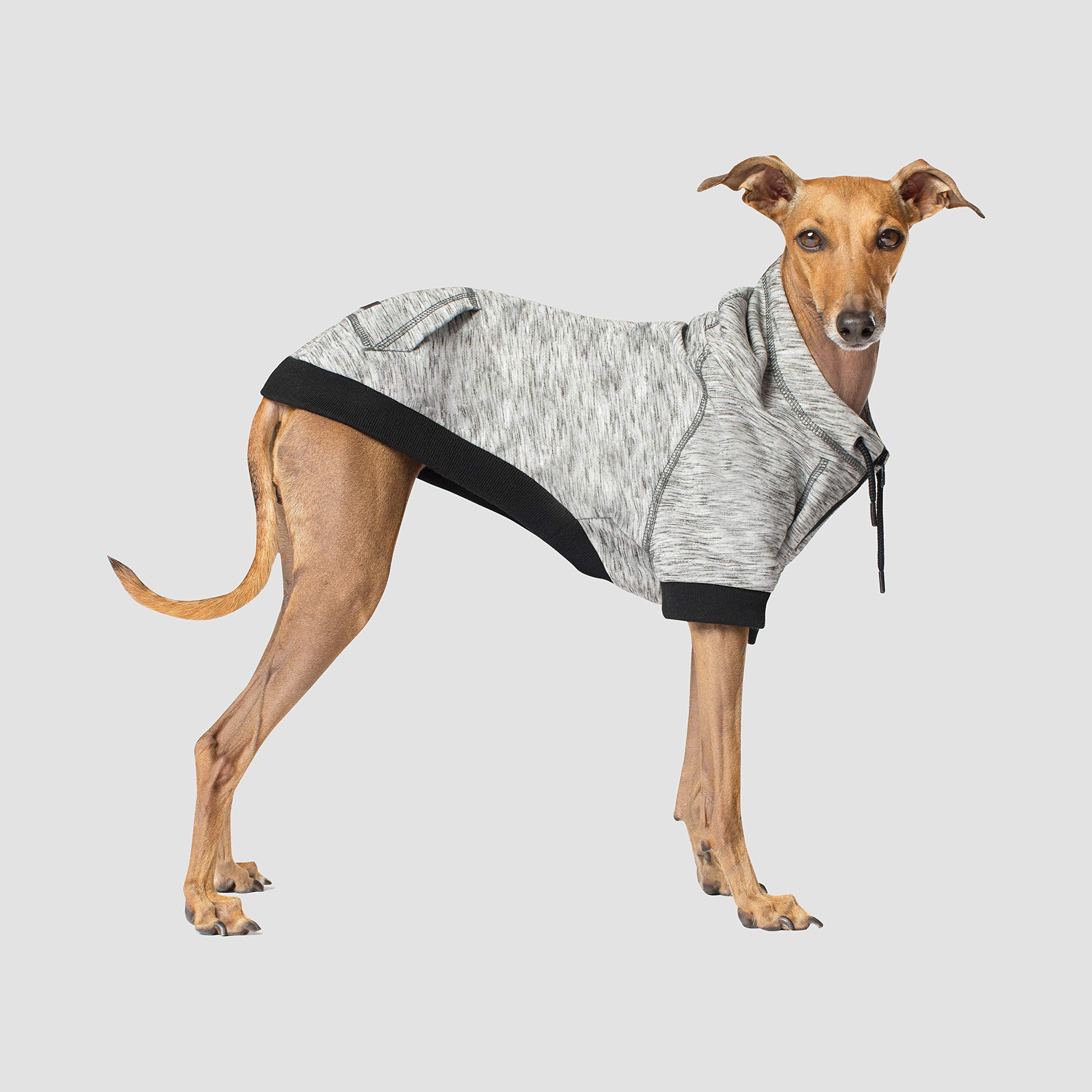 Canada Pooch | Hero Dog Hoodie | Pullover Spacedye Dog Sweater, Grey Mix, Size 24 by Canada Pooch