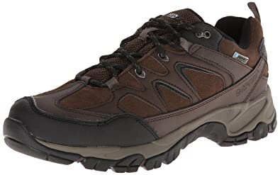 a4894c10dcb8ed Hi-Tec Men's Altitude Trek Low I Waterproof Hiking Boot,Dark Chocolate,9