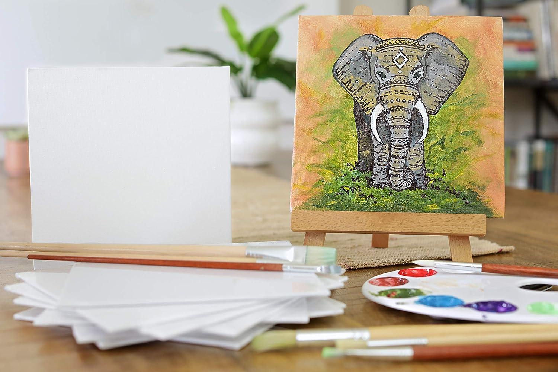 100/% Algod/ón sin /Ácidos Lienzos para Pintar 20x20cm Zenacolor Set de 10 Canvas Todos los Tipos de Pintura sobre Tela