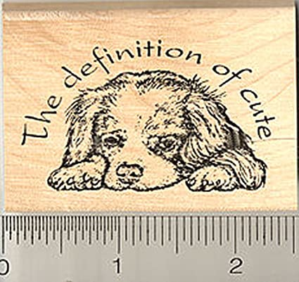 Cavalier King Charles Spaniel Rubber Stamp Dog Definition Of Cute