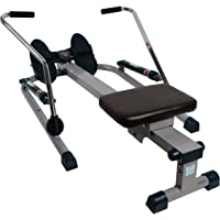 Sunny Health & Fitness Máquina de Remo con 12 Niveles de Resistencia Remadora c/Brazos Independientes SF-RW5619 de