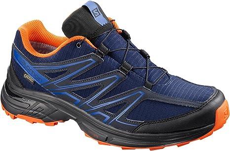 SALOMON Wings Access 3 GTX M Men's Trail Shoes, Men